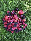 Different berries lie on the grass vitamins summer raspberry strawberry cherry currant sweet — Stock Photo