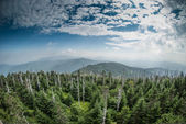 The Smokies from Clingman's Dome — Stock Photo