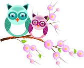 Two owls on twig of tree — Foto Stock