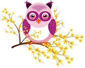 One purple owl on laburnum — Stock Photo