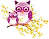 Two purple owls on laburnum — Stock Photo