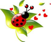 One ladybugs on leaf — Stock Photo
