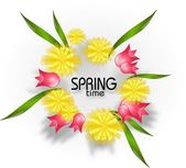 Spring time with dandelion and tulips — Stock Photo