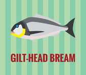 Gilt-head bream - drawing on green background. — Stock Vector