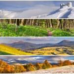 Set of the 4 seasons landscape — Stock Photo #50884827