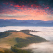 Sunrise over the sea of fog. — Stock Photo #50885139