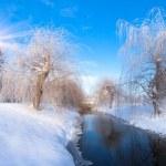 Winter landscape in city park — Stock Photo #50885217