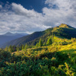 Beautiful summer landscape in the Carpathian mountains. — Stock Photo #50885275