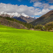 Spring landscape in the Swiss Alps. — Stock Photo #50886259