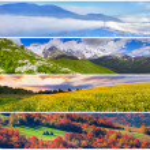 Set of the 4 seasons landscape — Stock Photo #50886417