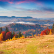 Autumn morning in the Carpathian mountains — Stock Photo #50886461