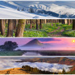 Set of the 4 seasons landscape — Stock Photo #50887313
