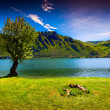 Summer sunny day in the park at Lake Idro — Stock Photo #50887475