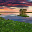 Beautiful summer landscape on the river. — Stock Photo #50887837
