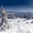 Winter landscape in the Carpathian mountains — Stock Photo #50887951