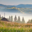 Misty morning in mountains village — Stock Photo #50888041