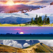 Set of the 4 seasons landscape — Stock Photo #50888429