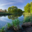Beautiful summer landscape on the river — Stock Photo #50889735