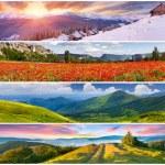 Set of the 4 seasons landscape — Stock Photo #50889855