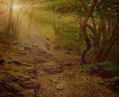 Little girl walking on the foggy woods. — Stock Photo