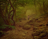 Girl walking on the foggy woods — Stock Photo