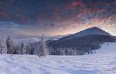 Mooie winterlandschap in de bergen — Stockfoto
