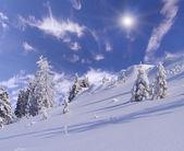 Winter in de bergen — Stockfoto