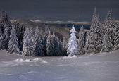 Winter landscape in the mountains at night — Stockfoto