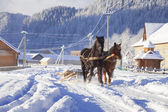 Carriage with horses in winter village — Stock Photo