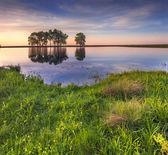 Spring landscape on the lake — Stockfoto