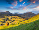 Summer landscape in the Carpathians village. — Stock Photo