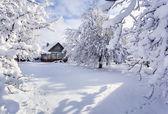 Winter fairytale in the mountain village — Stock Photo