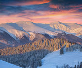 Colorful winter landscape in mountains — Stockfoto