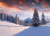 Winter morning in mountains — Foto de Stock