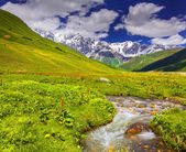 Fantastic landscape with a river in the mountains.  — Stok fotoğraf