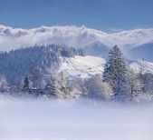 Winter landscape in mountain village — Stock Photo