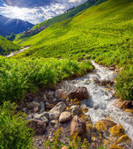 Mountain creek in the valley of village Adishi — ストック写真