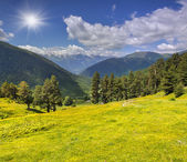 Beautiful summer landscape in the Caucasus mountains — Stock Photo