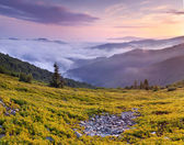 Misty sunset in the mountains — Stock Photo