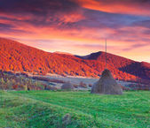 Dramatic autumn landscape in the mountains.  — Stock Photo