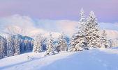 Zimowy wschód słońca w górach — Zdjęcie stockowe