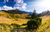 Krajobraz w górach — Zdjęcie stockowe
