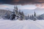 山を風景します。. — ストック写真