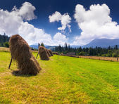 Hay in a village — Stock Photo