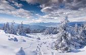 Zimní krajina v horách — 图库照片
