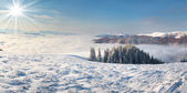 Winter morning in the Carpathian mountains — Stock Photo