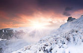 Winter sinrise in Carpathian mountains — Stock Photo