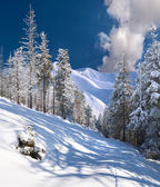 Winter landscape in themountains — Stock Photo