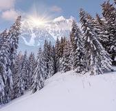 Winter landscape in the high mountains — ストック写真