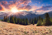 Spring sunrise in the mountains — Stock Photo